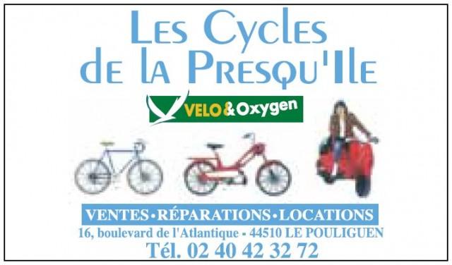 Location de vélos - Les Cycles de la Presqu'île