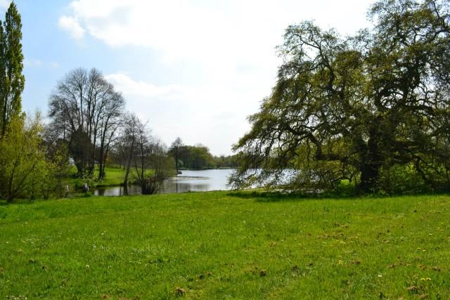 Aire de pique-nique de l'étang des platanes