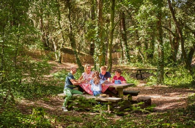Aire de pique-nique - Forêt d'Escoublac - La Baule