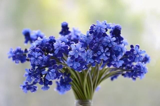 Bouquet de Fleurs - Fleuriste L'oli Fleurs La Baule