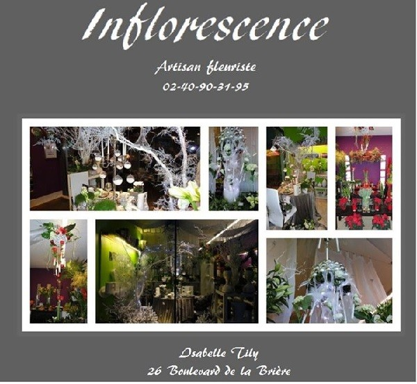 Inflorescence - Herbignac
