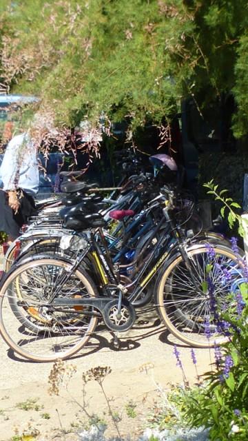 Le Prad'Héol - Location de vélos - Mesquer-Quimiac