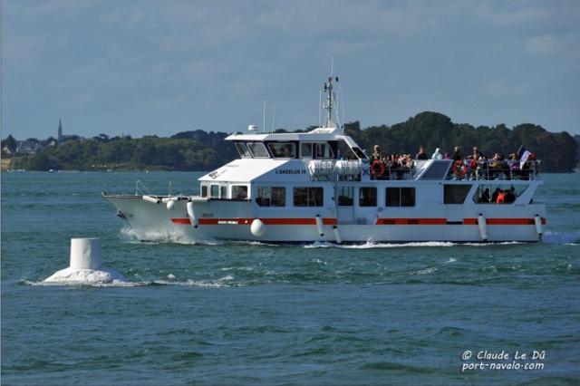 Les Vedettes Angélus - Découverte du Golfe du Morbihan