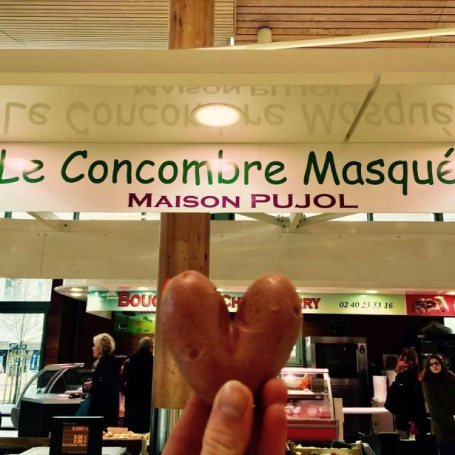Maison Pujol - Le Pouliguen - Office de Tourisme La Baule Presqu'île de Guérande