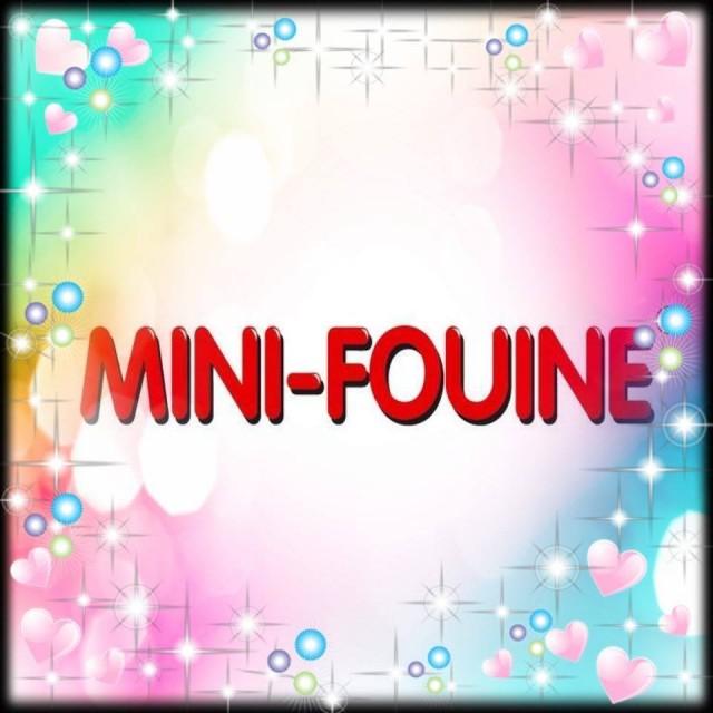 Mini-Fouine - Guérande