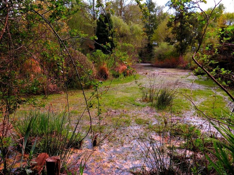 01 - Les Jardins du Marais à Herbignac