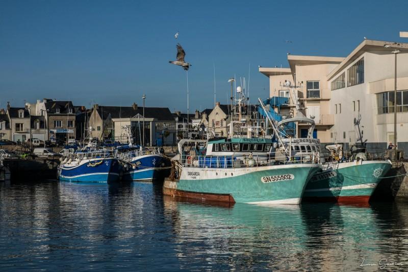 Port de pêche de La Turballe