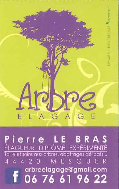 Arbre Elagage - Mesquer-Quimiac
