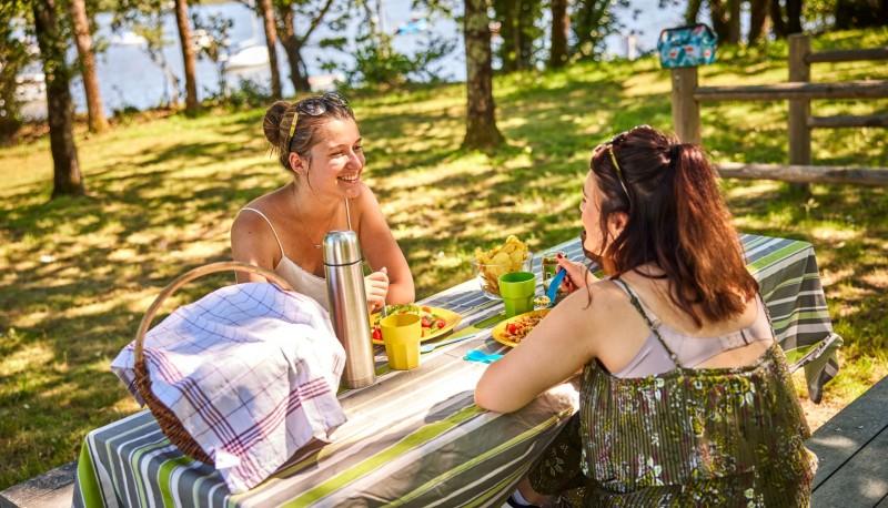 'Vieille Roche' picnic area