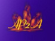 Association de Promotion de l'Art et des Artistes (APA) - logo
