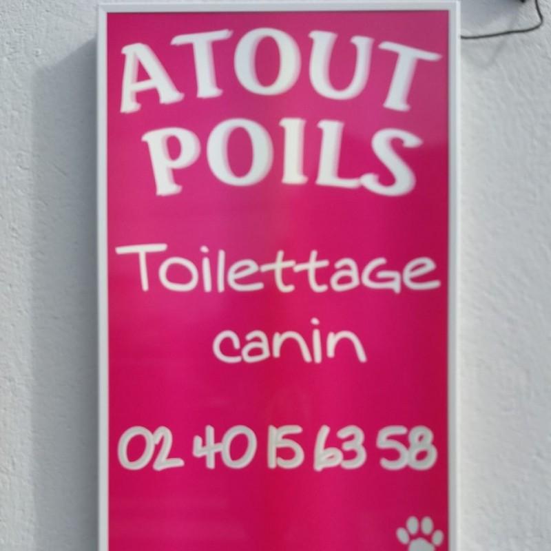 Atouts poils Guérande