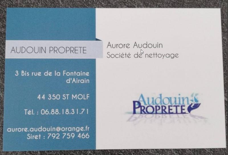 Audouin propreté - Saint-Molf