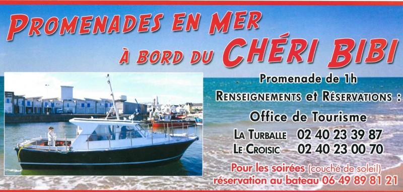 Balades en mer à bord du Chéri Bibi, La Turballe