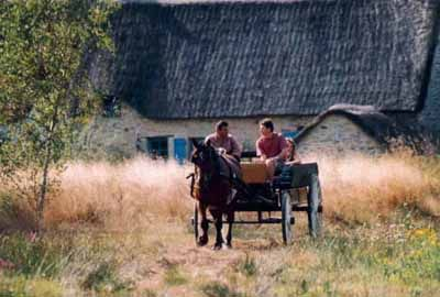 Calèche dans le village de Bréca