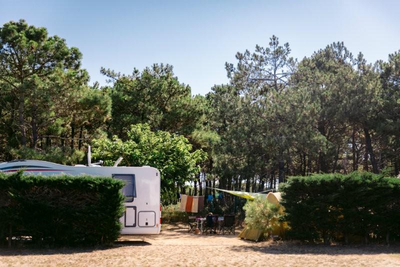 camping-les chardons bleus-la-turballe