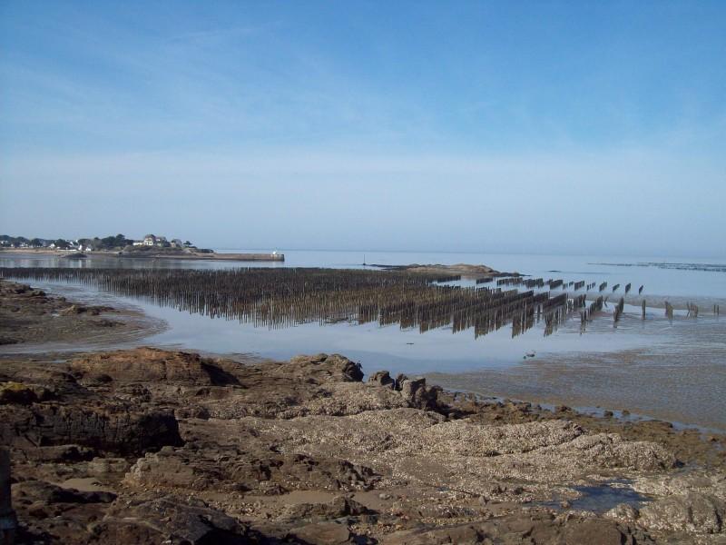 Circuit Entre sel terre - Assérac - Vus sur la pointe de Merquel