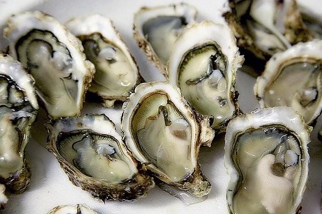Distributeur d'huîtres M.Fohanno Guérande