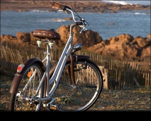Formule  vélo - Appart'hôtel Mon Calme