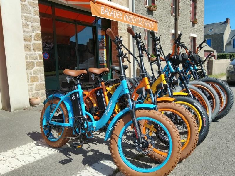 Guérande - Les Trottes de l'Ouest Avec selle ou sans selle...