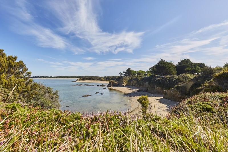 Lande et plages de Pen Bé à Assérac, Presqu'île de Guérande