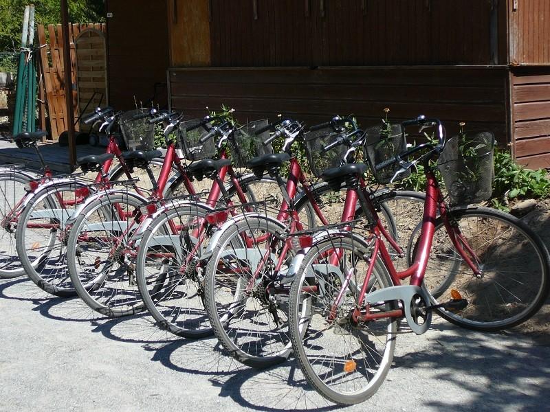 Location de vélos - Mini-golf de la Mine d'Or - Pénestin