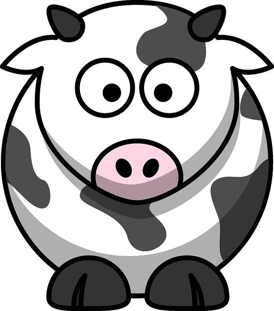 vache-1006032