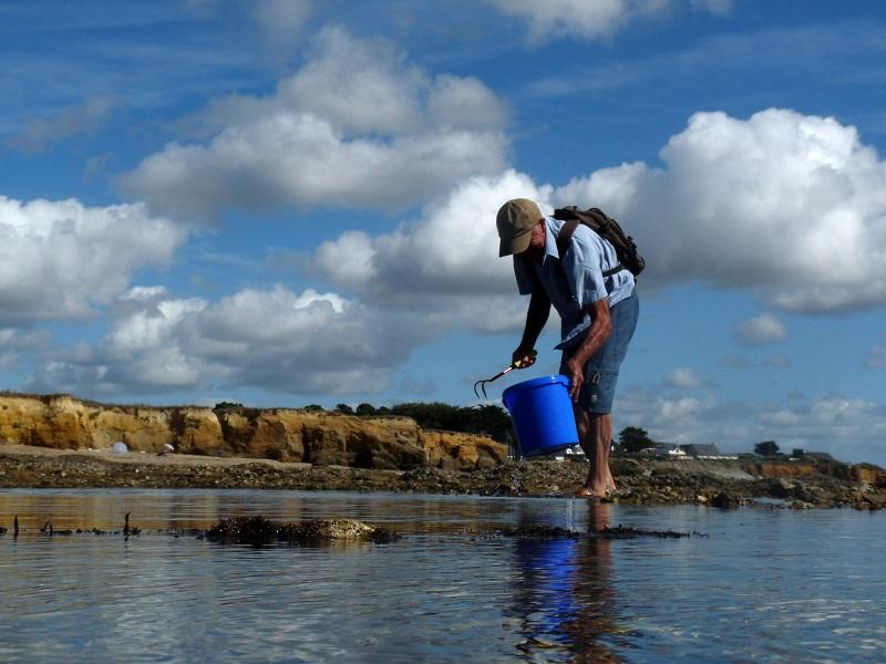 Les Estivales : Pêche à pied à ASSERAC : PECHEAPIEDASSERAC