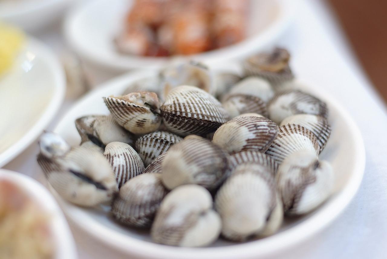 Blog-Les joies simples de la pêche à pied au Pouliguen ! - © Pixabay