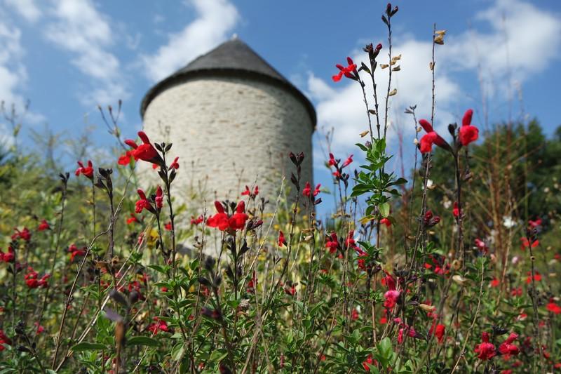 Blog - Rencontre avec Agnès, à la fois au jardin et au moulin à Herbignac