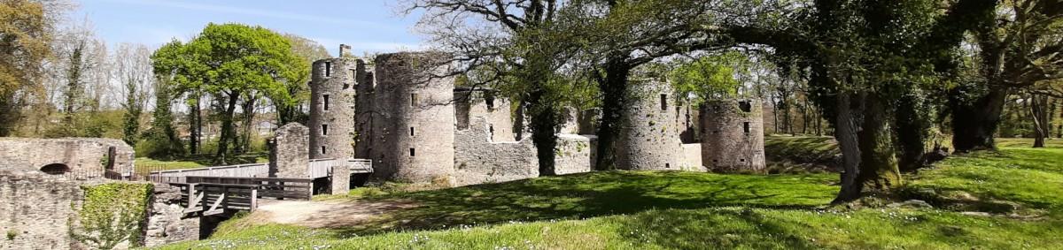 Château de Ranrouët - Herbignac