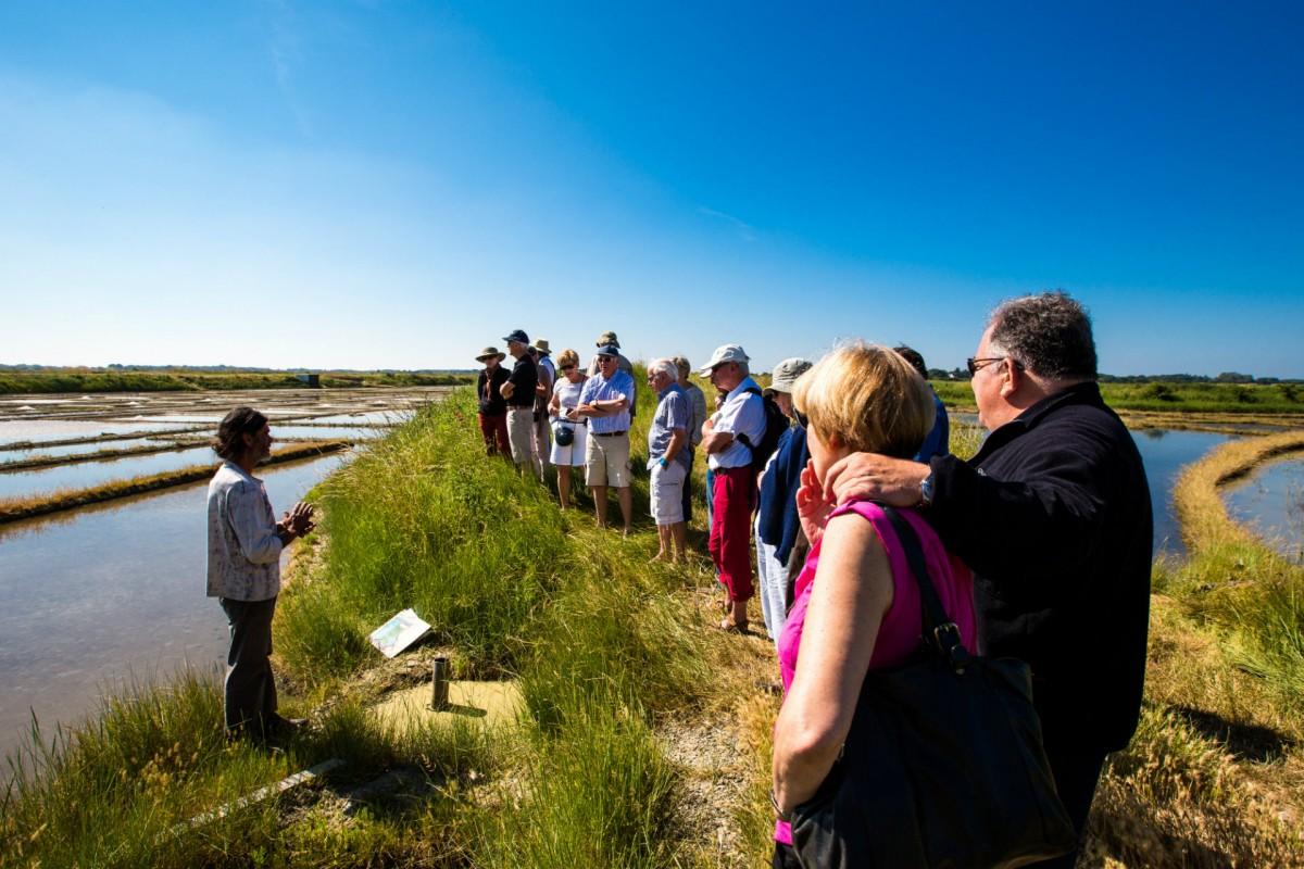 Visite des marais salants du Mès - CRT Bretagne / Simon Bourcier
