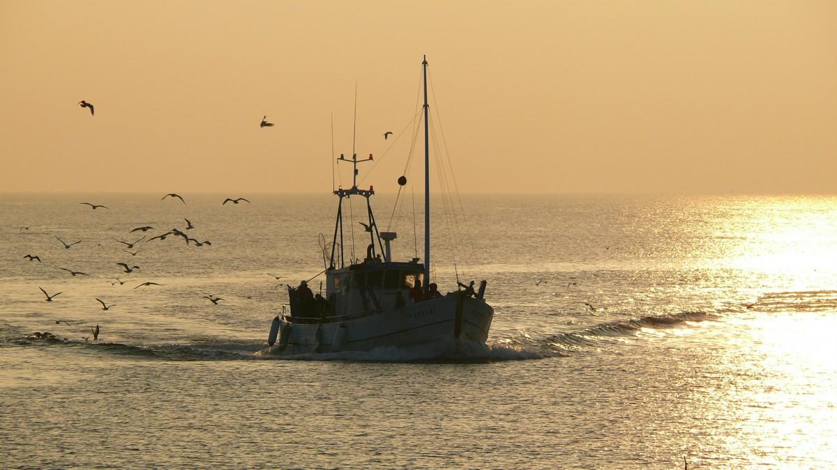 Bateau de pêche au large de La Turballe