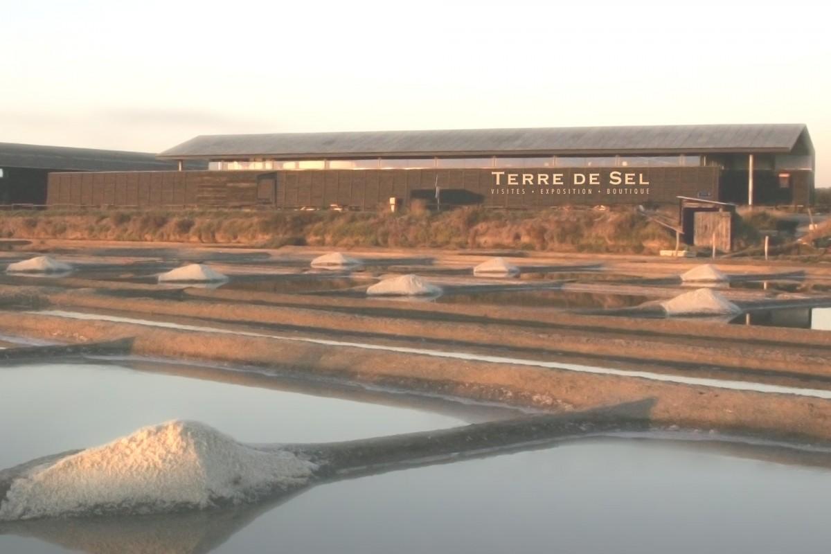 Marais salants de Guérande - Salorge - Terre de sel / Pascal François