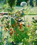 Ile Jardin de Kervolan