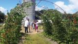 Jardin Partagé et Pédagogique de Cramphore au Pouliguen