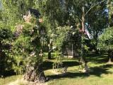 La Moussette  - La végétation du jardin profite aux oiseaux - La Baule