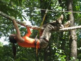Saint-Molf - Ticket for Monkey Forest - Trees and adventures