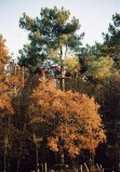 Monkey Forest -  Jeux de plein-air et aventures accrobranche - Saint Molf - Route de Guérande à Herbignac