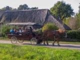 Saint-Lyphard - Faune briéronne - Balade en chaland + calèche - 1h30