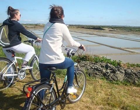 A vélo dans les marais salants
