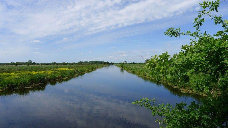 Canal de la boulaie - Crédit photo : J.Sanson