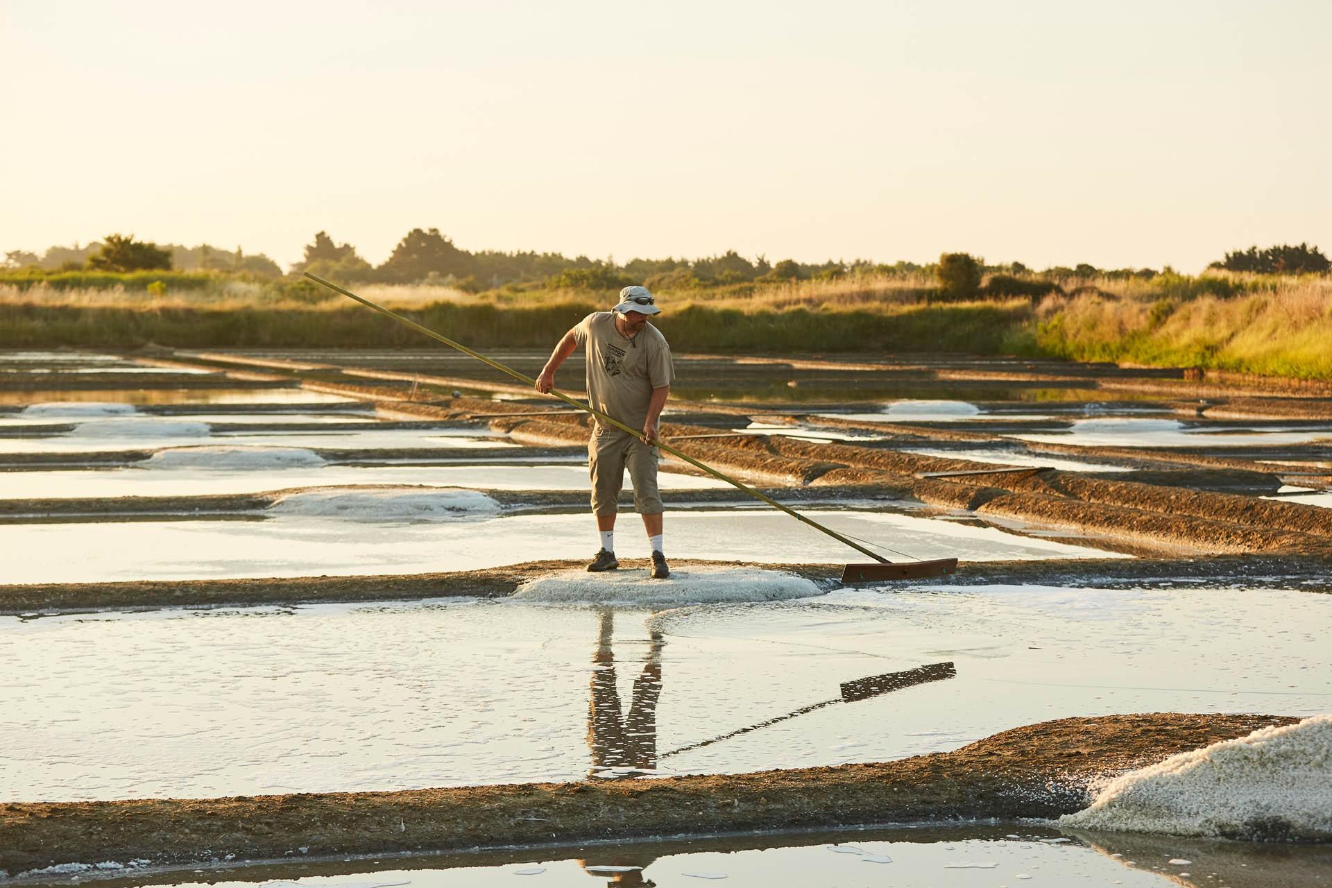 Paludier dans les marais salants