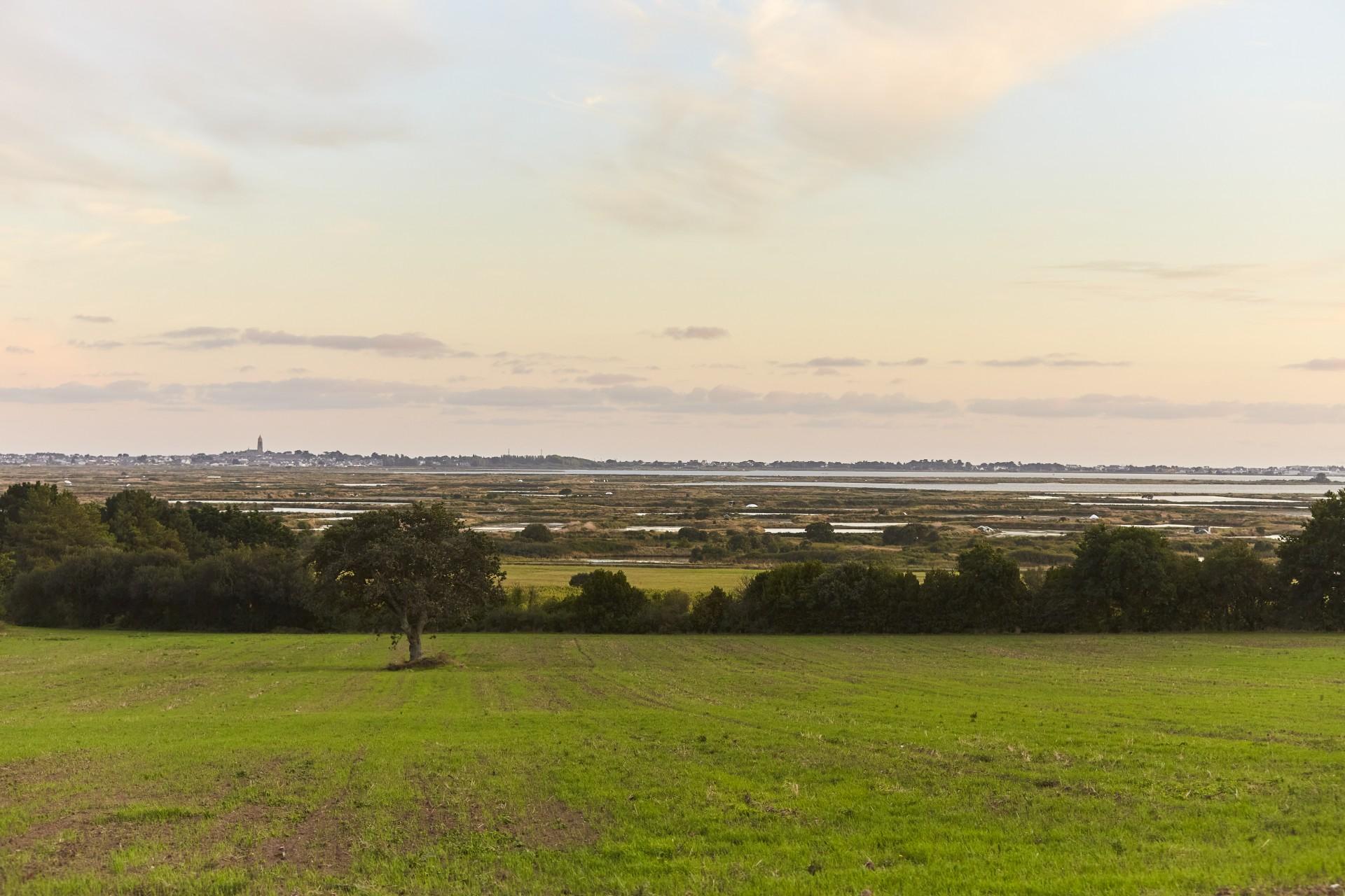 Panorama Guérande 2020