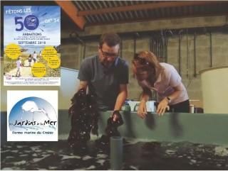 Les 50 ans du GR®34 - Atelier-découverte à la Ferme Marine