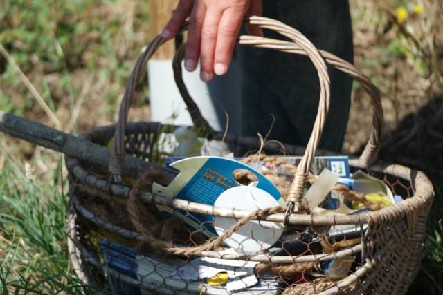 Sorties Algues - Mesquer CAP Atlantique
