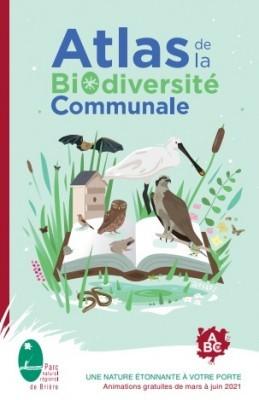 ABC - Découvertes des oiseaux des marais  salants - St Molf