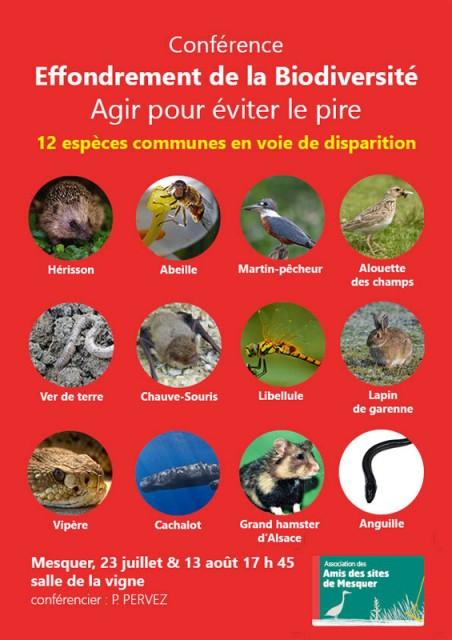 Amis des sites - Conférence sur la biodiversité Mesquer-Quimiac