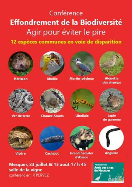 amis-des-sites-conference biodiversite-mesquer quimiac