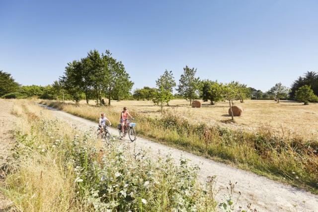 Blog - Pénestin à vélo avec Aurélie
