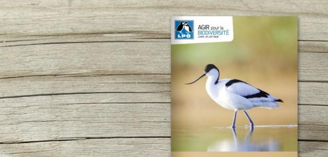 LPO44-refuge-oiseaux-1mai